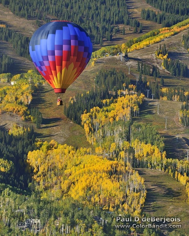 Aspens and Hot Air Ballooning